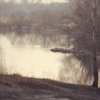 тяжёлая  вода :: Дмитрий Потапов