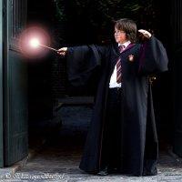 Harry Potter 3 :: Ekaterina Stafford