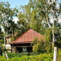 Домик в деревне :: Дмитрий Беликов