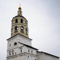 Свято-Пафнутьев Боровский монастырь. :: Ирина