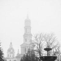 Туман :: Валерий Голоха