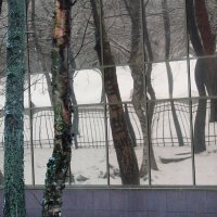 Зеркала,зеркала отраженье моё :: Владимир Гилясев