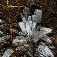 Хрупкие кристаллы :: Ваадана Аар-ти