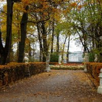 Летний сад 2008 год :: Наталия Короткова