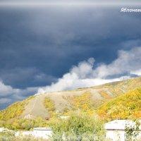 Вид из окна :: Софья Фадеева