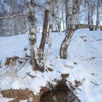 Святой ручей :: Ксения