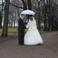 новая семейная пара :: георгий назаренков