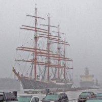 Непогода... Она же для всех! :: Александр Петров