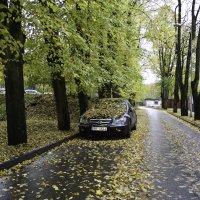 Осень. :: Виталий Меркл