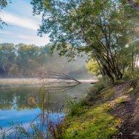 утро на озере :: Андрей Черников