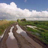 Дорога после дождя :: Валерий Талашов