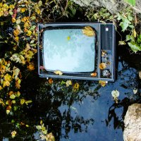 Осень показывает телевизор... :: Roman Rez