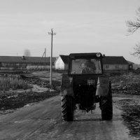 Деревня... :: Галина Кучерина