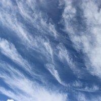 Небо надо мной :: Mariya laimite