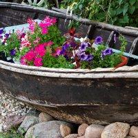 Старая лодка. :: Виктор Истомин