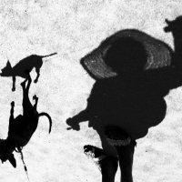 Дама с собачкой :: Беспечный Ездок