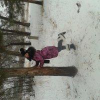 зимой :: Галина Кузнецова