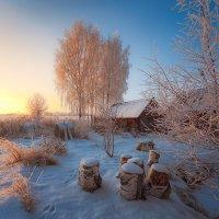 Картинка зимне-деревенская... :: Александр Никитинский