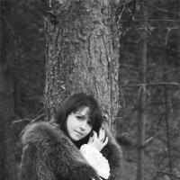 В лесу :: Diana Mravchinskaya