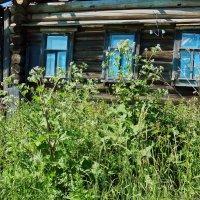 Дом с голубыми глазами :: Валерий Талашов