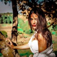 Под палящим солнцем Амазонки. :: Алексей Каценбоген