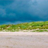 Побережье Северного моря :: Дмитрий Райко