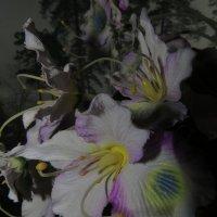 Не живые цветы :: Александр Дорогин