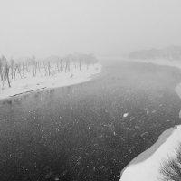Метель над Днепром :: Vladimir