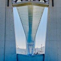 Золотой мост (вид снизу) :: Александр Морозов