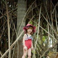 в джунглях :: Victoria Bryfar