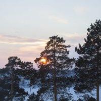из окна моего детства :: liudmila drake