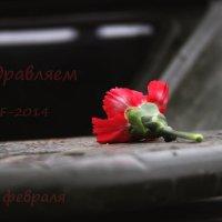 23 ФЕВРАЛЯ (PF - 2014) :: Александра Бенцман