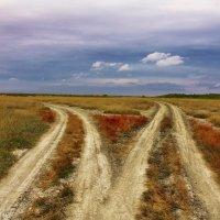 Две дороги :: Владимир Богославцев(ua6hvk)