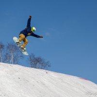 Победный прыжок :: Anna Gubina