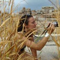 Фотограф в  засаде. :: Larisa Gavlovskaya
