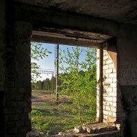 Из окна... :: Павел Зюзин