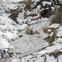 Зимняя река. :: Екатерина Рябинина