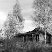 Покинутая деревня. :: Наталья Цветкова