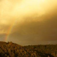 радуга на закате дня :: Ирина Горина