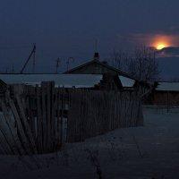 Спряталась... :: Александр Никитинский