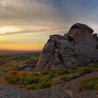Природа Казакстана :: Леся Вишня