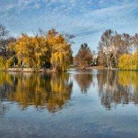 золотая осень :: Юлия Густерина ...