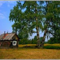 Путешествие по реке Пинеге :: Иван Клещин