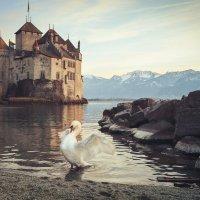 Шильйонский замок на берегу Женевского озера :: Татьяна Бирюкова