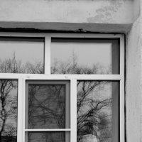 Окно художественной школы :: Татьяна Копосова