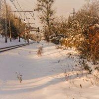 зима :: Наталия Квас