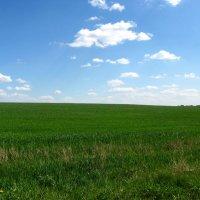 пейзаж в стиле ВИНДОВС ХР :: Дмитрий .