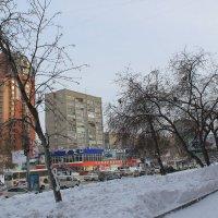 На Красном проспекте. :: Олег Афанасьевич Сергеев