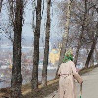 Прогулка :: Viktina Polyanskaya