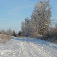 Зимняя дорога :: Анатолий Антонов